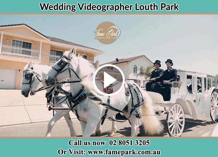 The wedding carriage Louth Park NSW 2320