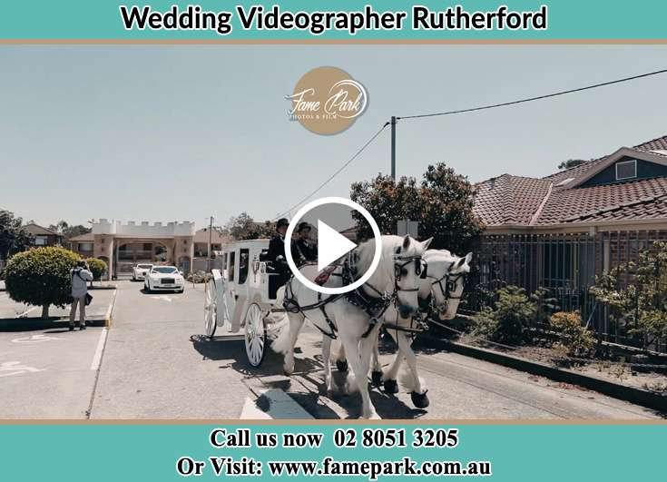 The wedding carriage Rutherford NSW 2320